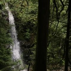 Langdale Falls