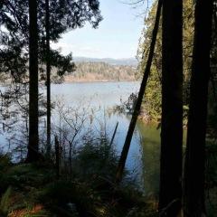 Hayward Lake ©Azarm-Shahpoori