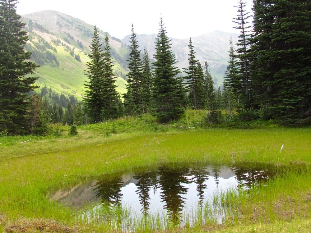 © Martin Kafer - Pond near Camp