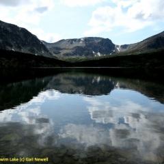 Swim Lake © Gail Newell