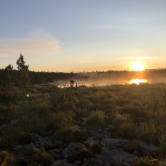 Sunrise over Camp Lake © Sally McDermott